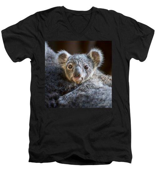 Up Close Koala Joey Men's V-Neck T-Shirt by Jamie Pham