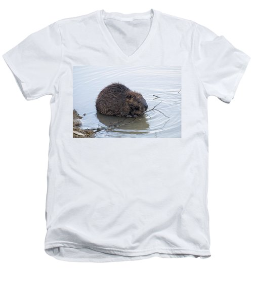 Beaver Chewing On Twig Men's V-Neck T-Shirt by Chris Flees