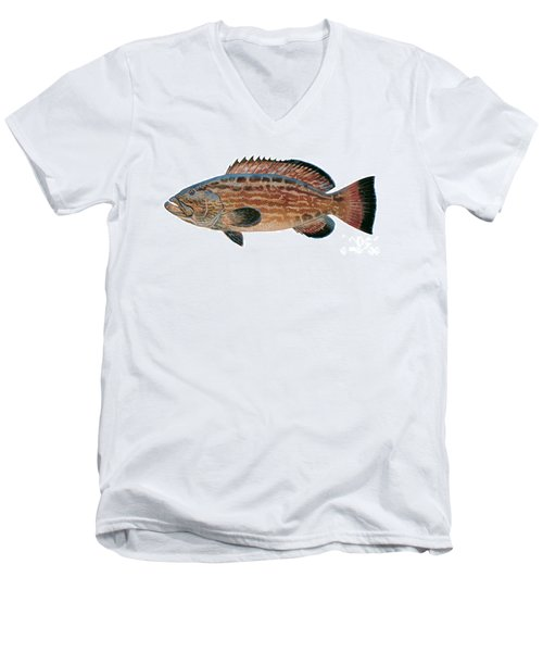 Black Grouper Men's V-Neck T-Shirt by Carey Chen