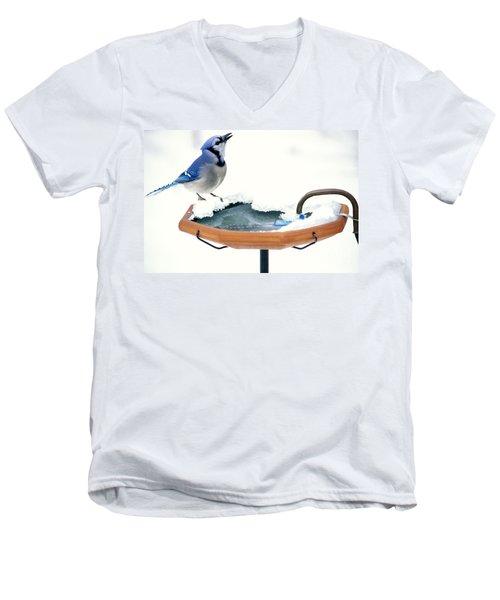 Blue Jay At Heated Birdbath Men's V-Neck T-Shirt by Steve and Dave Maslowski