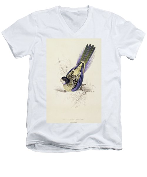 Browns Parakeet Men's V-Neck T-Shirt by Edward Lear