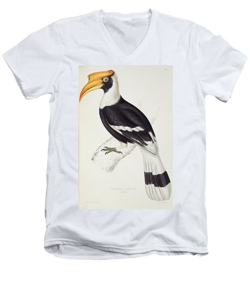 Great Hornbill Men's V-Neck T-Shirt by John Gould