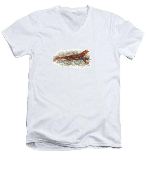 California Newt Men's V-Neck T-Shirt by Cindy Hitchcock