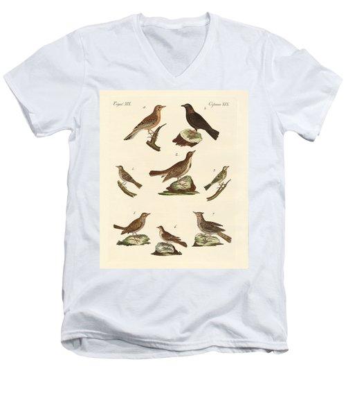 Different Kinds Of Larks Men's V-Neck T-Shirt by Splendid Art Prints