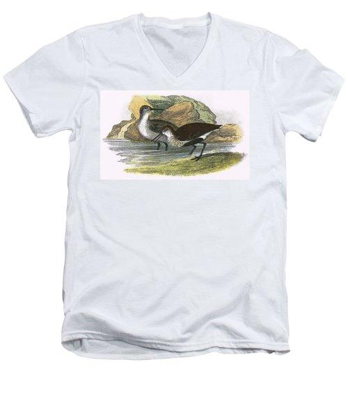 Dunlin Men's V-Neck T-Shirt by English School