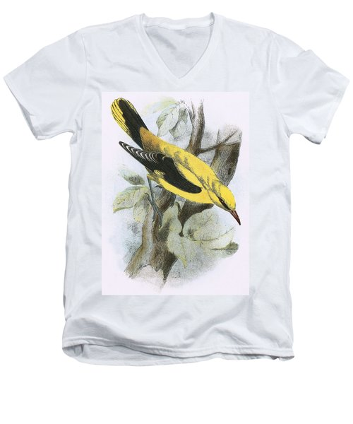 Golden Oriole Men's V-Neck T-Shirt by English School