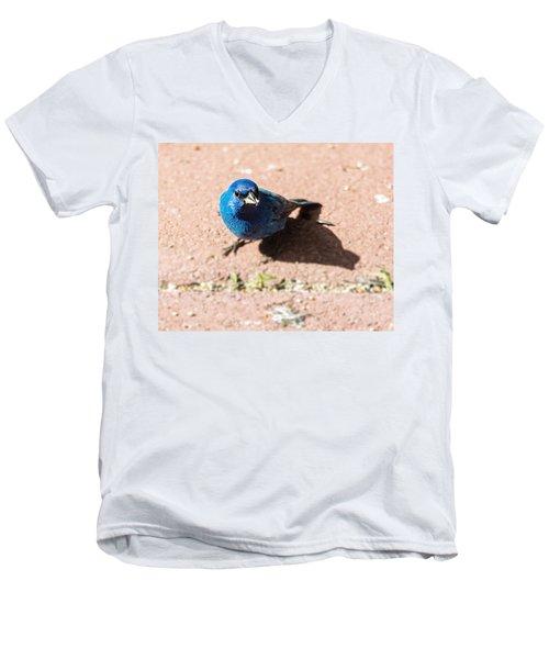 Indigo Bunting Men's V-Neck T-Shirt by Jon Woodhams