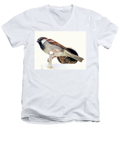 Little Sparrow Men's V-Neck T-Shirt by Karen Wiles