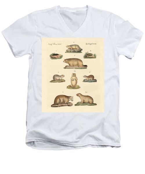 Marmots And Moles Men's V-Neck T-Shirt by Splendid Art Prints