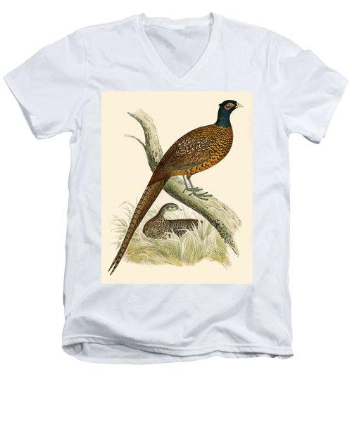 Pheasant Men's V-Neck T-Shirt by Beverley R Morris