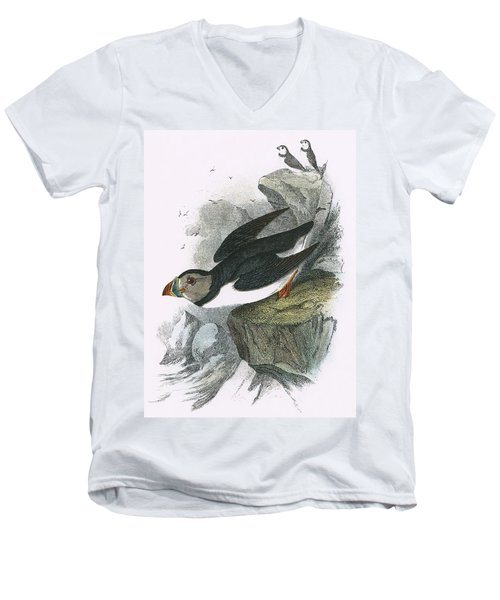 Puffin Men's V-Neck T-Shirt by English School