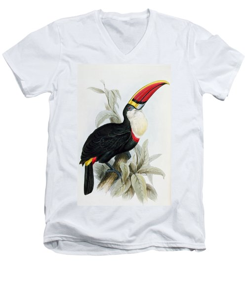 Red-billed Toucan Men's V-Neck T-Shirt by Edward Lear