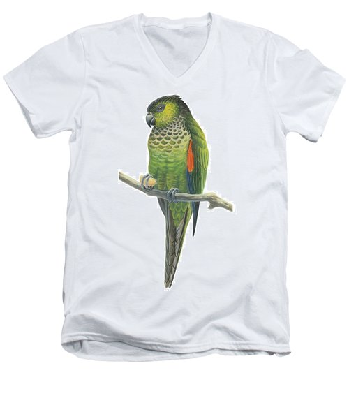 Rock Parakeet Men's V-Neck T-Shirt by Anonymous