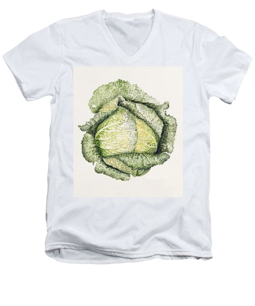 Savoy Cabbage  Men's V-Neck T-Shirt by Alison Cooper