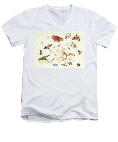 Study Of Insects And Flowers Men's V-Neck T-Shirt by Ferdinand van Kessel