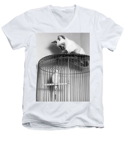 The Parakeet And The Cat Men's V-Neck T-Shirt by Underwood Archives