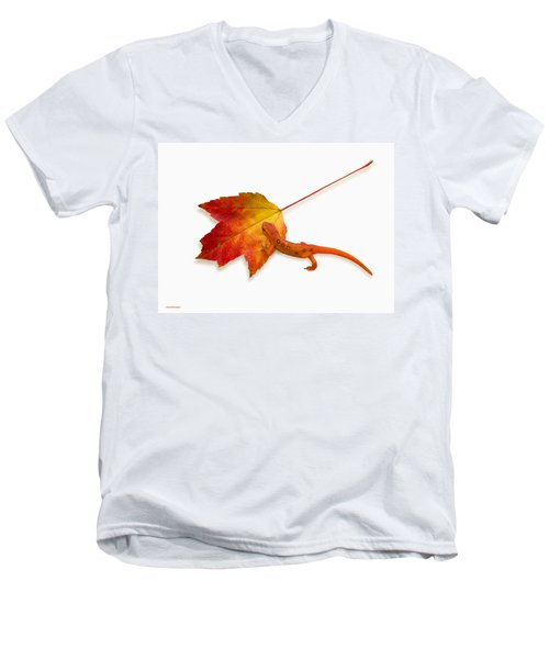 Red Spotted Newt Men's V-Neck T-Shirt by Ron Jones