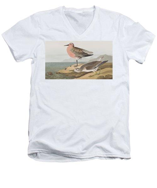 Red-breasted Sandpiper  Men's V-Neck T-Shirt by John James Audubon