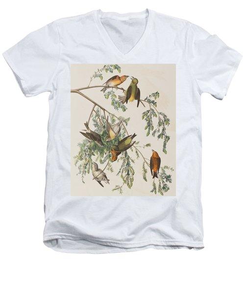 American Crossbill Men's V-Neck T-Shirt by John James Audubon