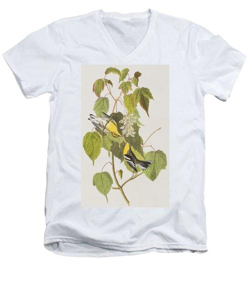 Hemlock Warbler Men's V-Neck T-Shirt by John James Audubon
