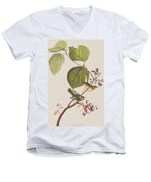 Pine Swamp Warbler Men's V-Neck T-Shirt by John James Audubon