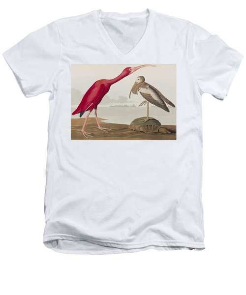 Scarlet Ibis Men's V-Neck T-Shirt by John James Audubon