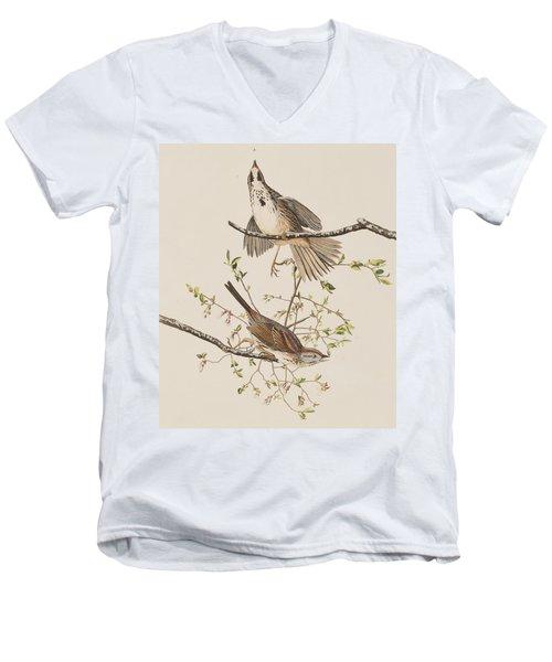 Song Sparrow Men's V-Neck T-Shirt by John James Audubon