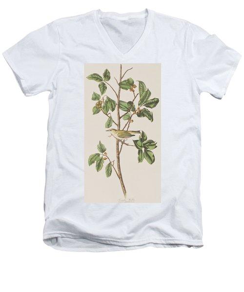 Tennessee Warbler Men's V-Neck T-Shirt by John James Audubon