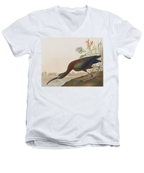 Glossy Ibis Men's V-Neck T-Shirt by John James Audubon