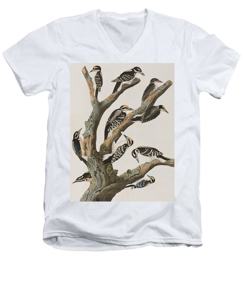 Woodpeckers Men's V-Neck T-Shirt by John James Audubon
