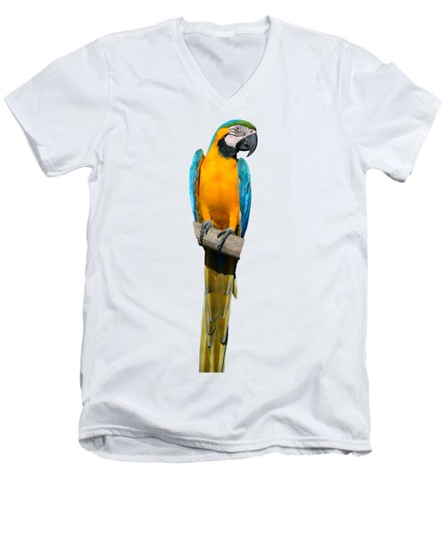 Blue And Gold Macaw Men's V-Neck T-Shirt by George Atsametakis