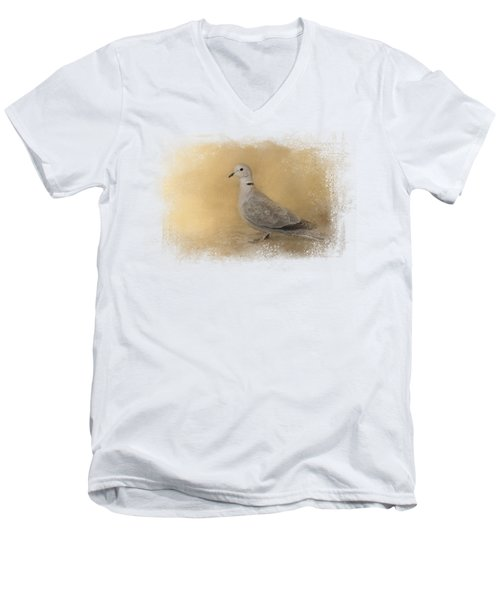 Into The Light Men's V-Neck T-Shirt by Jai Johnson