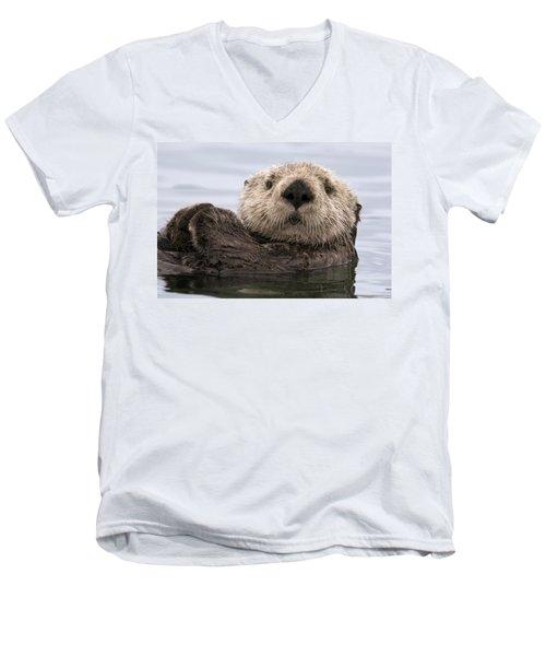 Sea Otter Elkhorn Slough Monterey Bay Men's V-Neck T-Shirt by Sebastian Kennerknecht