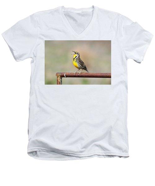 A Morning Song Men's V-Neck T-Shirt by Michael Morse