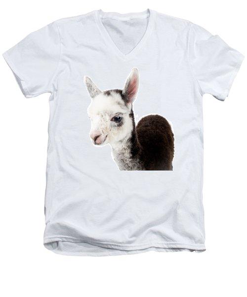 Adorable Baby Alpaca Cuteness Men's V-Neck T-Shirt by TC Morgan