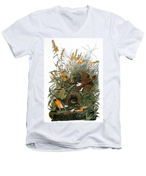 Audubon: Meadowlark Men's V-Neck T-Shirt by Granger
