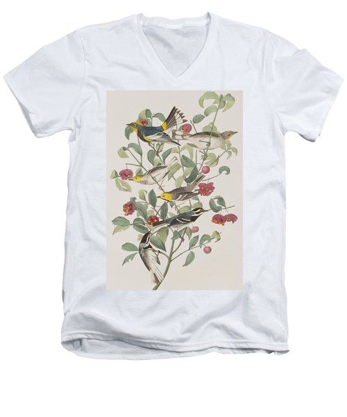 Audubons Warbler Hermit Warbler Black-throated Gray Warbler Men's V-Neck T-Shirt by John James Audubon