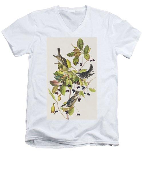 Black Poll Warbler Men's V-Neck T-Shirt by John James Audubon