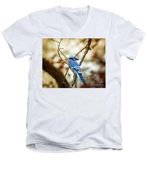 Blue Jay Men's V-Neck T-Shirt by Robert Frederick