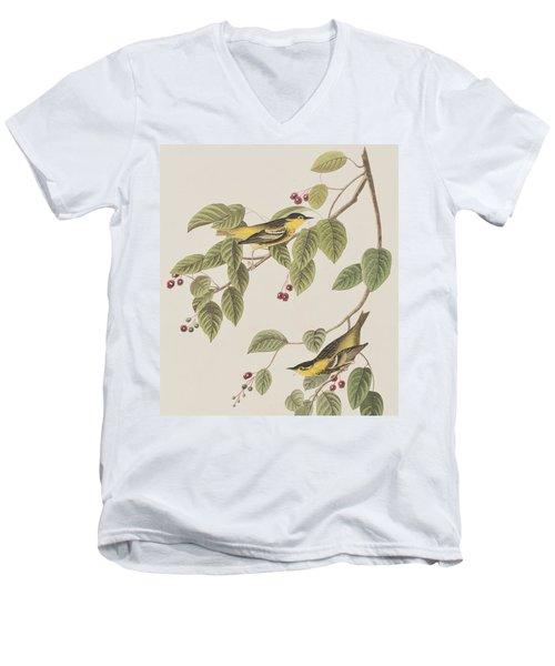 Carbonated Warbler Men's V-Neck T-Shirt by John James Audubon