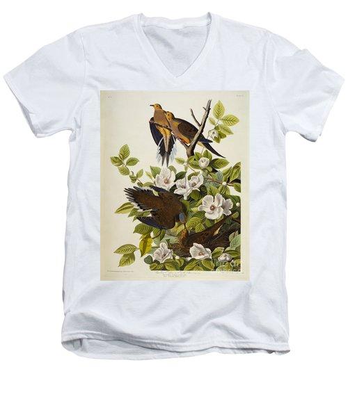 Carolina Turtledove Men's V-Neck T-Shirt by John James Audubon