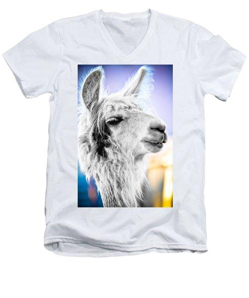 Dirtbag Llama Men's V-Neck T-Shirt by TC Morgan