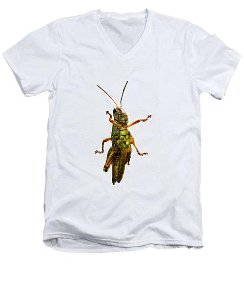 Grasshopper II Men's V-Neck T-Shirt by Gary Adkins