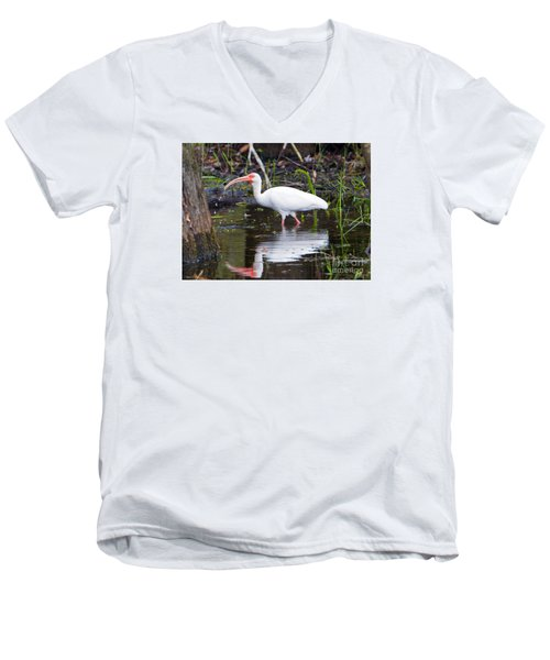 Ibis Drink Men's V-Neck T-Shirt by Mike Dawson
