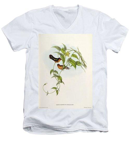 Leucippus Fallax Men's V-Neck T-Shirt by John Gould