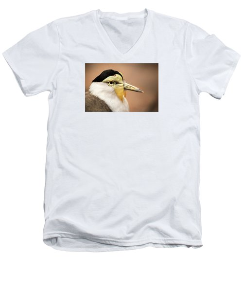 Masked Lapwing Men's V-Neck T-Shirt by Don Johnson