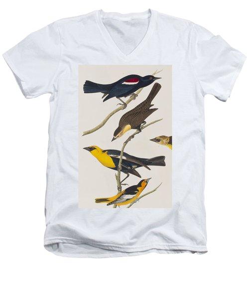 Nuttall's Starling Yellow-headed Troopial Bullock's Oriole Men's V-Neck T-Shirt by John James Audubon