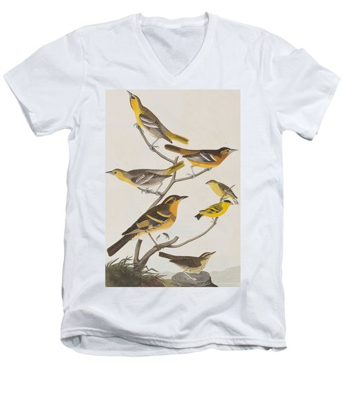 Orioles Thrushes And Goldfinches Men's V-Neck T-Shirt by John James Audubon