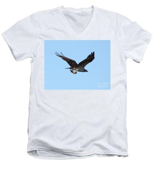 Osprey With Fish Men's V-Neck T-Shirt by Carol Groenen
