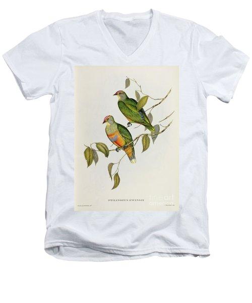 Ptilinopus Ewingii Men's V-Neck T-Shirt by John Gould
